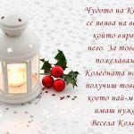 Чудото на Коледа се явява на всеки, който вярва в него. За това ти пожелавам в Коледната нощ да получиш това, от което най-много имаш нужда. Весела Коледа!