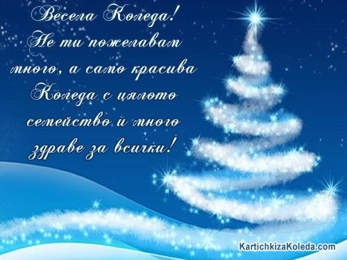 Весела Коледа! Не ти пожелавам много, а само красива Коледа с цялото семейство и много здраве за всички!
