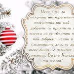 Нека днес да получиш най-красивите пожелания от най-добрите си приятели и всички да се сбъднат по най-добрият начин в следващите дни, за да може винаги с усмивка да вървиш. Весела Коледа ти желая!